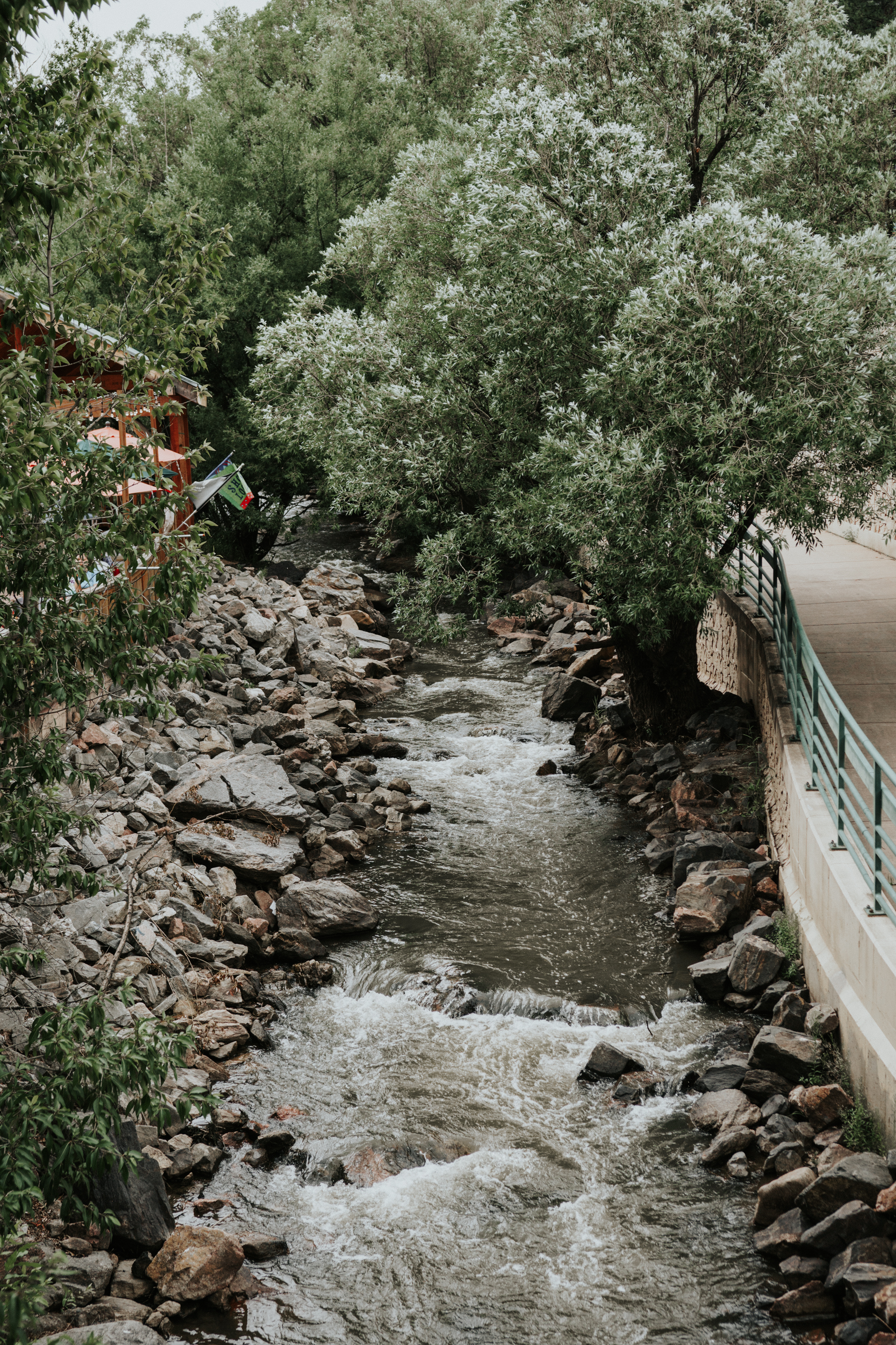 View of Bear Creek passing through downtown Evergreen