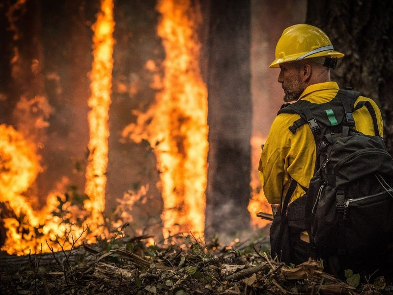 Wildfire in Evergreen: We Are Blessed, but Vigilant